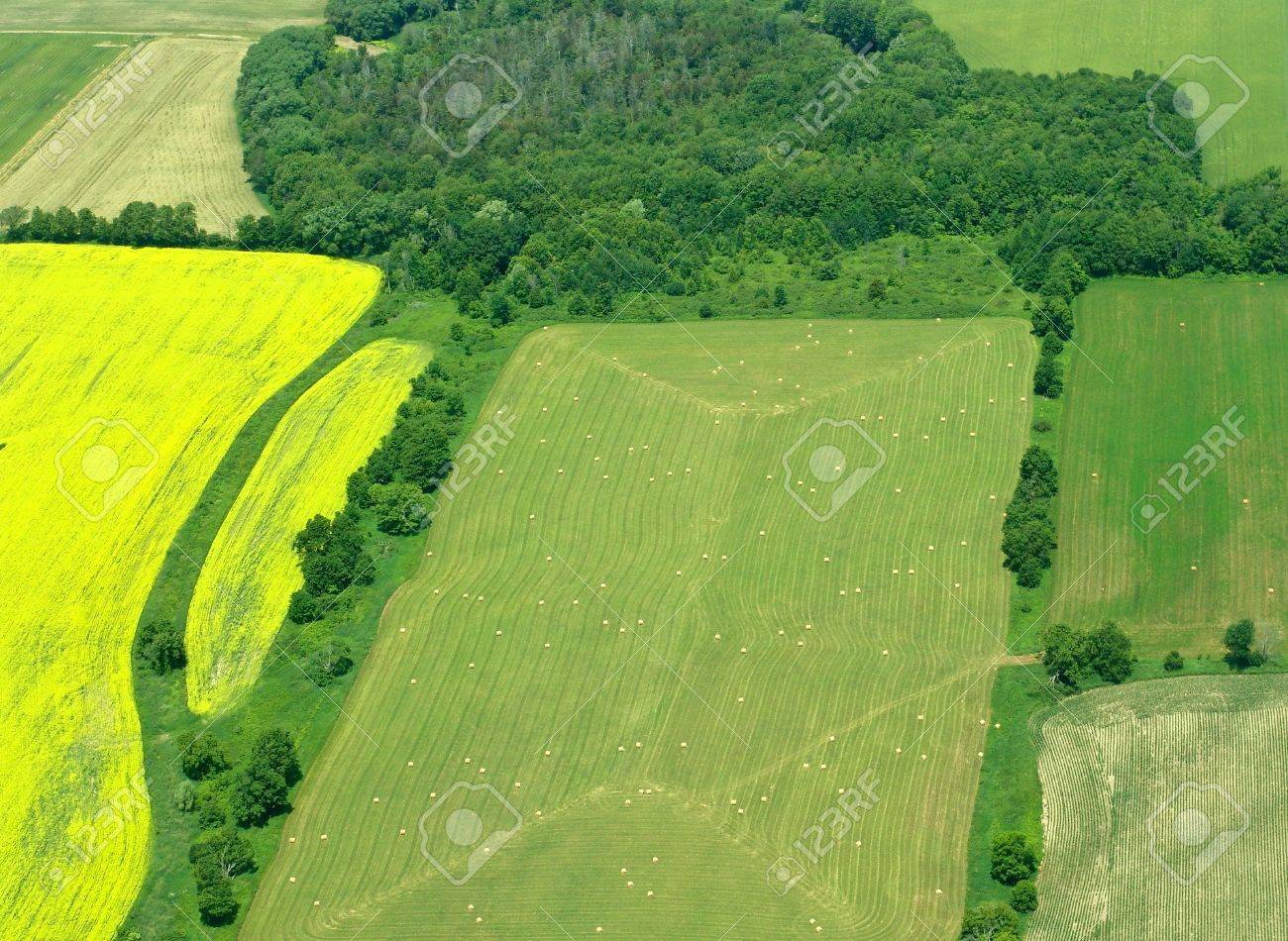 Typical aerial view of green fields and farms, Ontario, Canada - 5425677