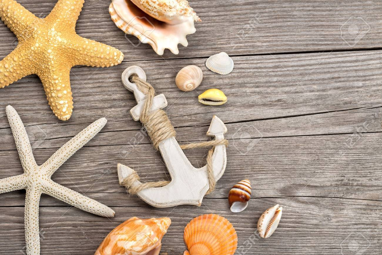 heap of shells with anchor on wooden plank - 46622901