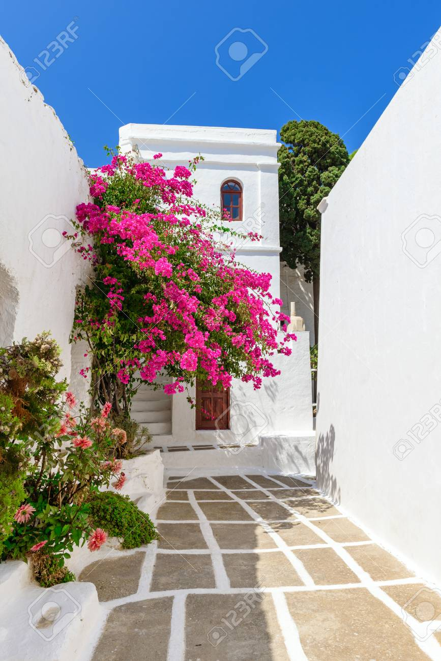 Greek Whitewashed Architecture With Summer Flowers Serifos Island