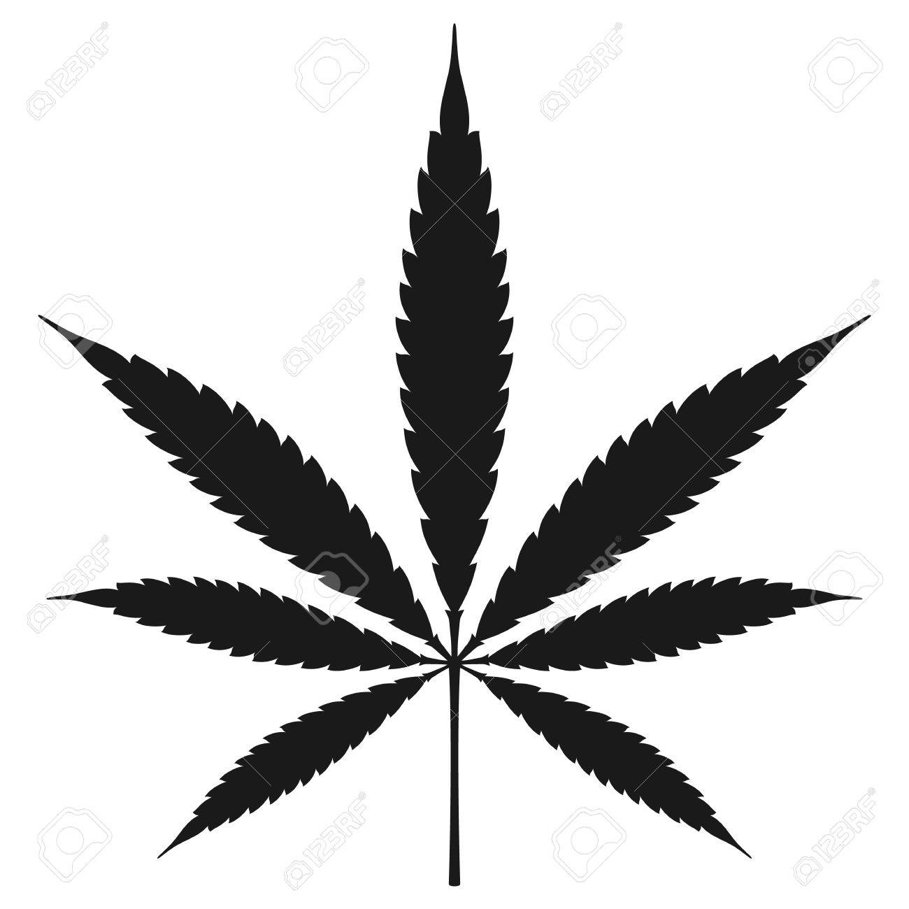 marijuana leaf vector illustration royalty free cliparts vectors rh 123rf com marijuana leaf vector art marijuana leaf vector icon