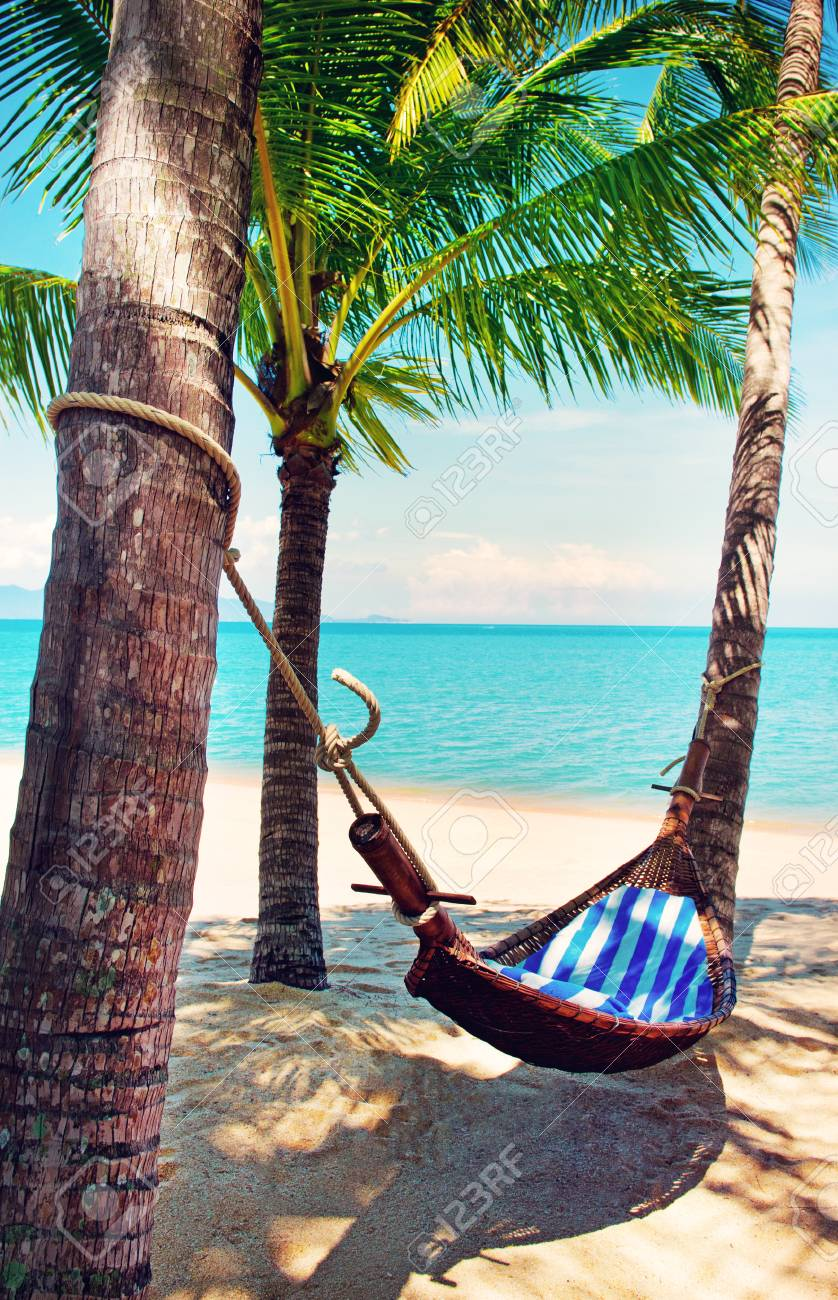 Amazing Beautiful Beach. Hammock Between Two Palm Trees On The Beach. Holiday And  Vacation Concept