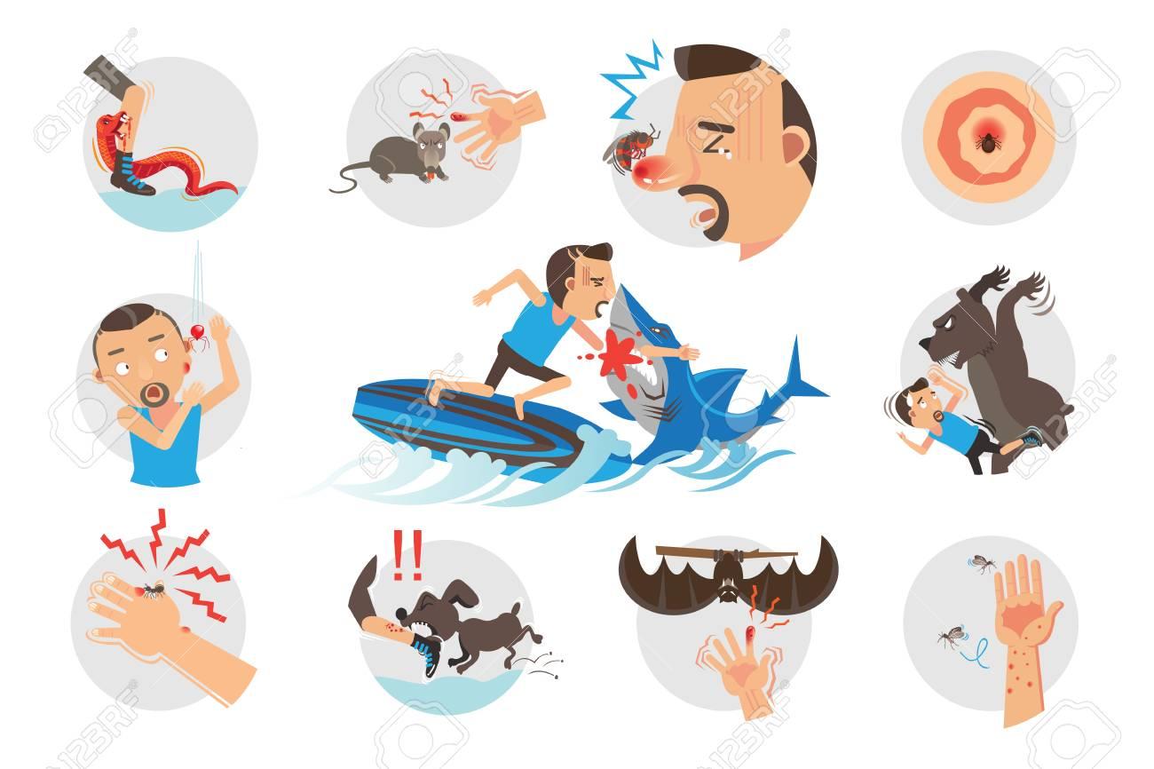 Animal Bites Wild Animal Attacking Hurting Human.Cartoon vector, illustrations - 91245255