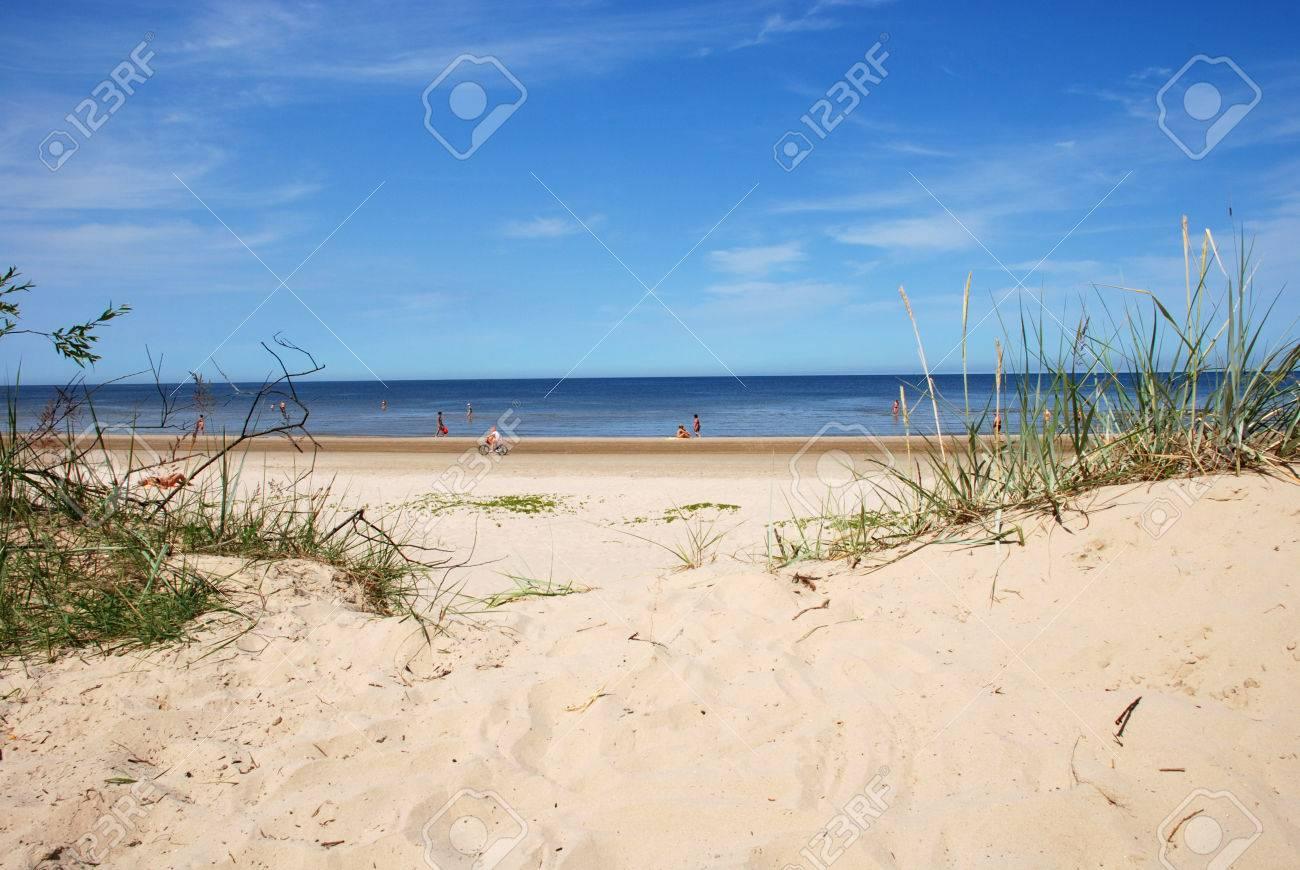 Dunes on a beach of Jürmala in Latvia - 1463377