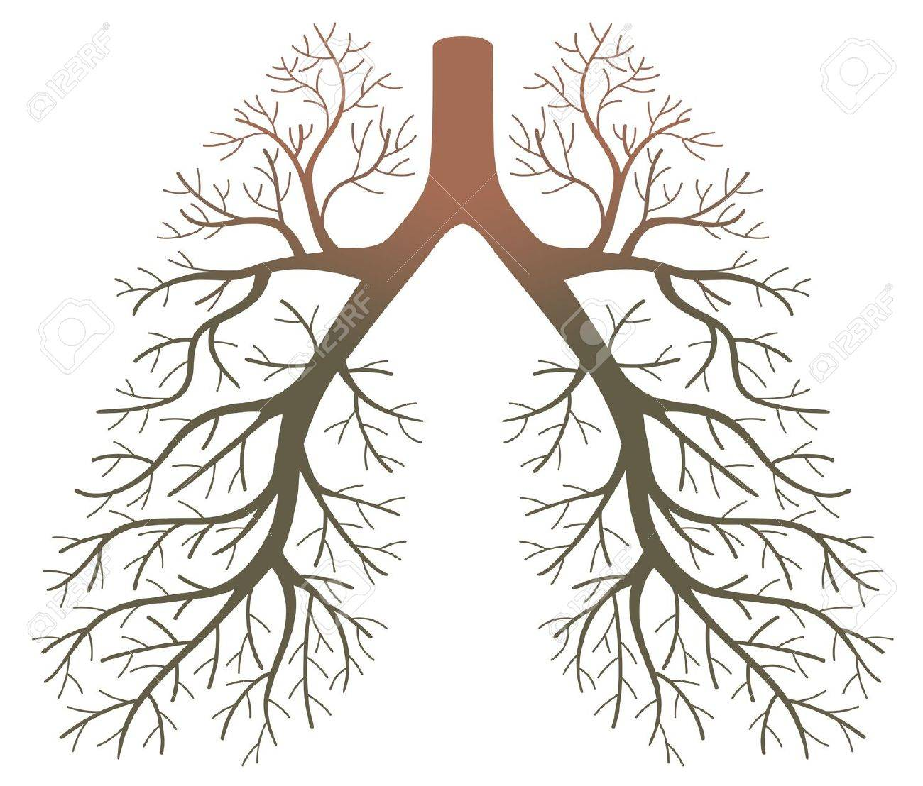 lung patients Stock Vector - 18826160