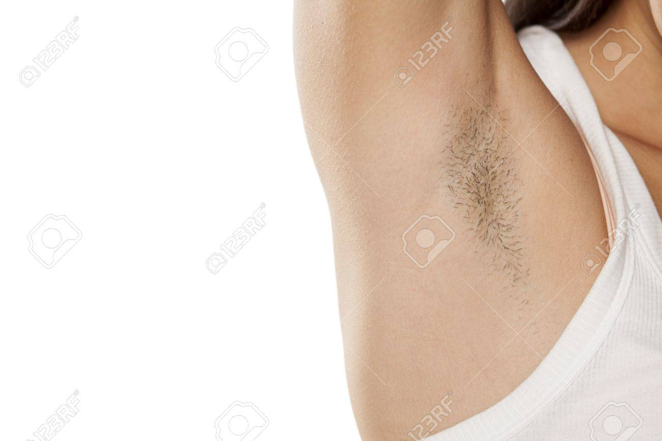 hairy stock photos. royalty free hairy images