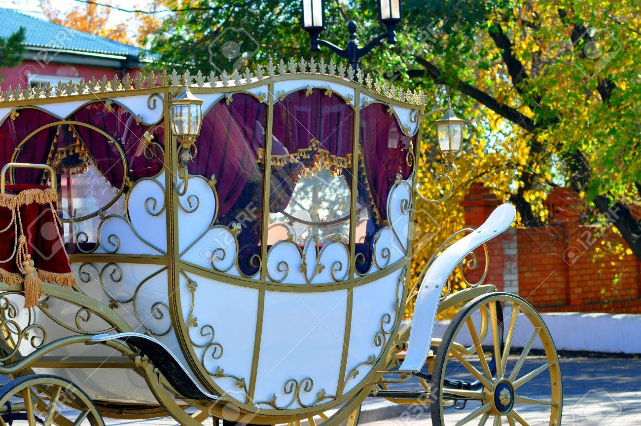 Wedding carriage - 17338281