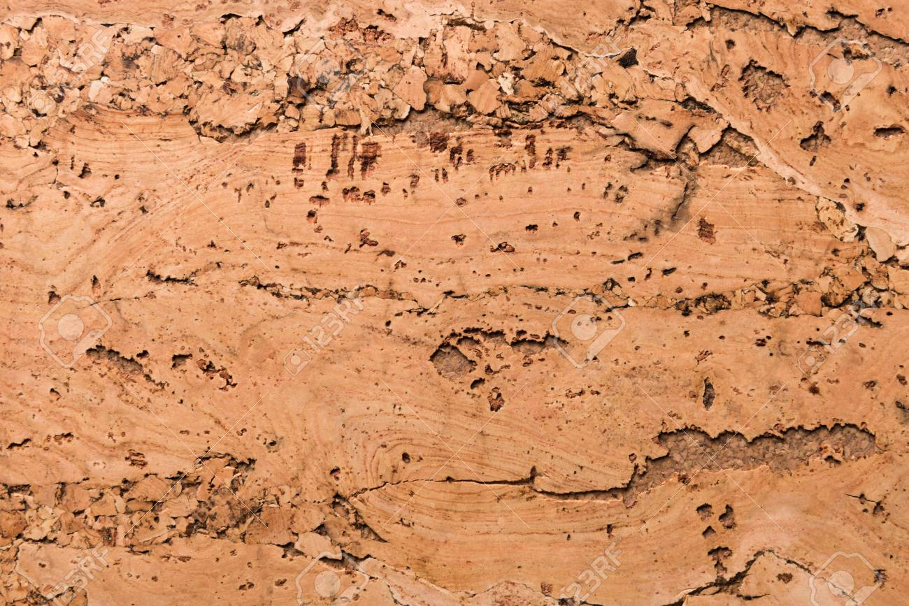 Close Up Background and Texture of Cork Board Wood Surface, Nature Product Industrial - 100534459