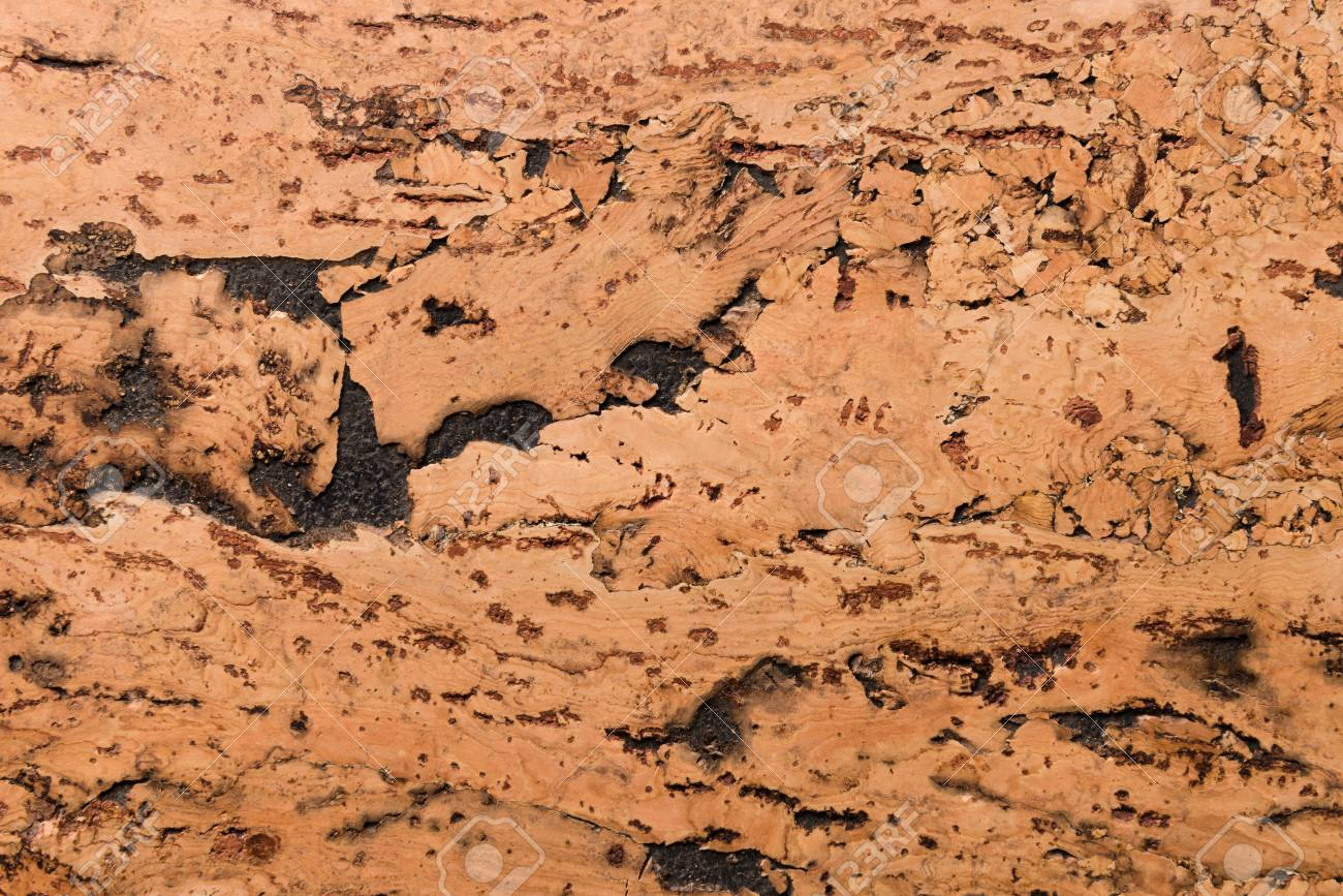 Close Up Background and Texture of Cork Board Wood Surface, Nature Product Industrial - 100534461
