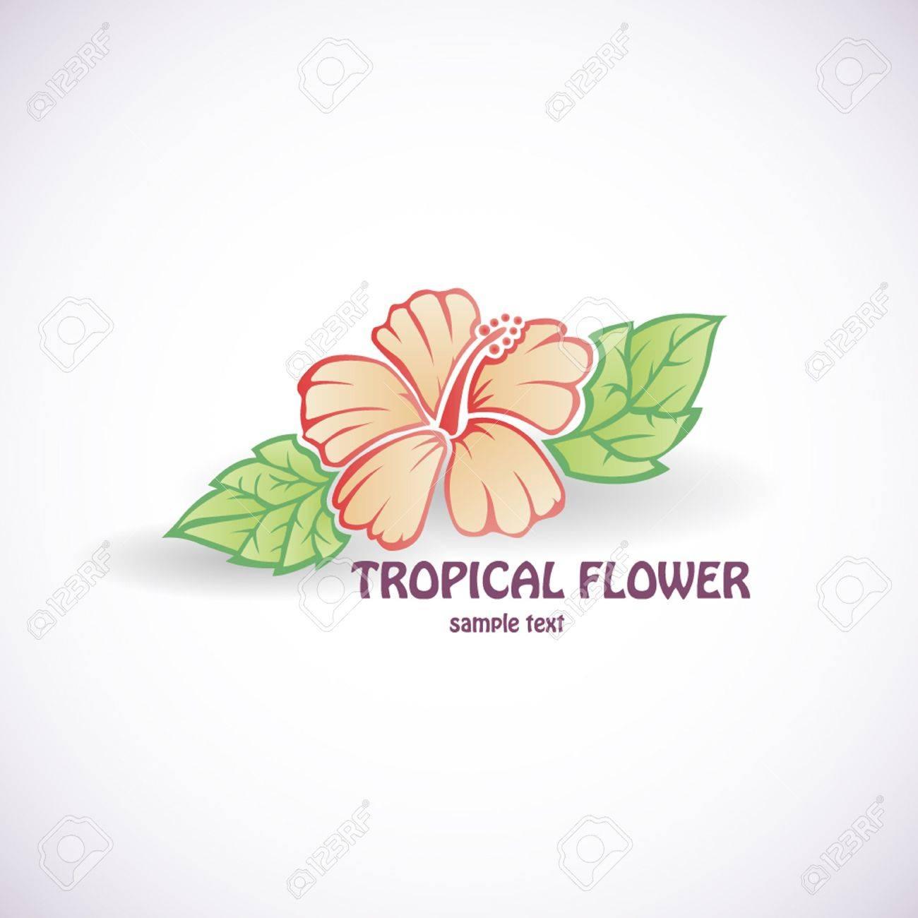 Hibiscus Fleur Symbole Vecteur Icône Tatouage Fond