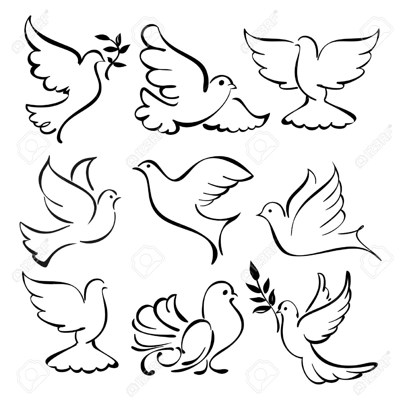 Fly Cartoon Drawing Vector Flying Dove Sketch