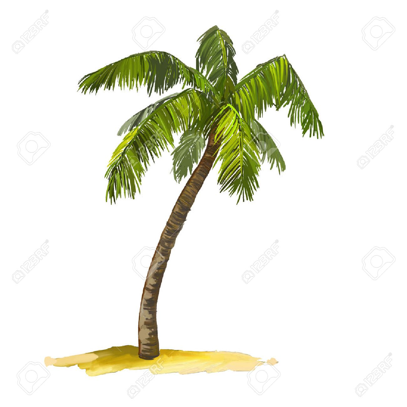 palm tree vector illustration hand drawn painted watercolor - 38414371