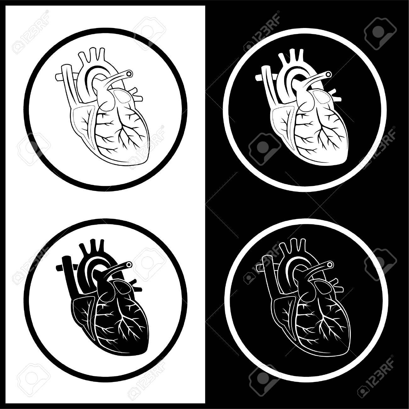 Human Heart Vector Black And White Vector Heart Icons Black And