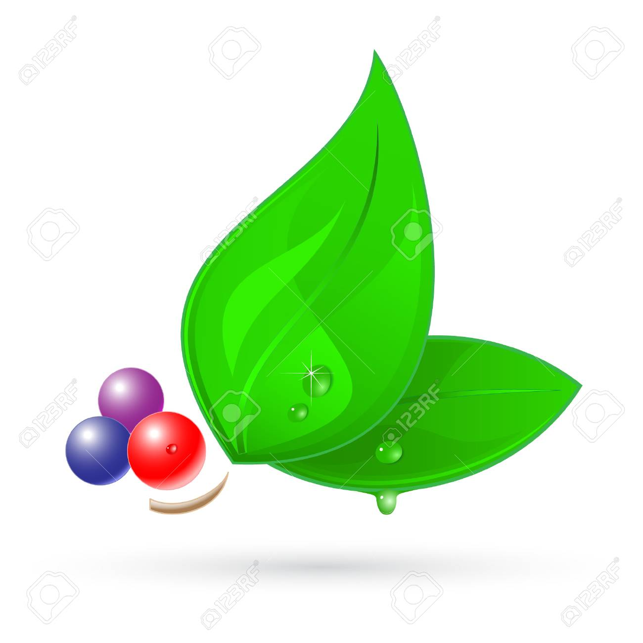 Vector 3d leaf icon Stock Vector - 4776701
