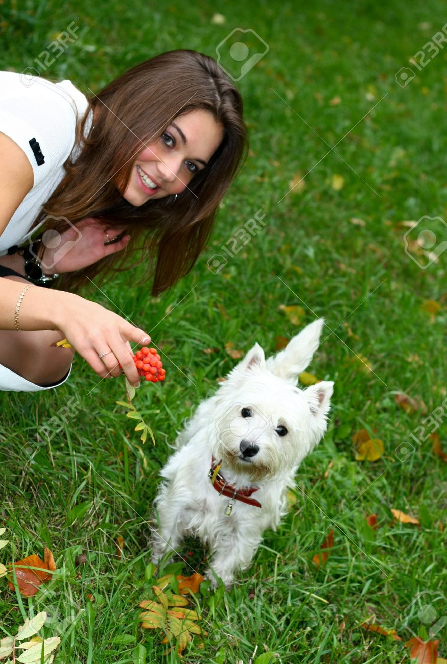portrait of beautiful girl with her dog Stock Photo - 8156581