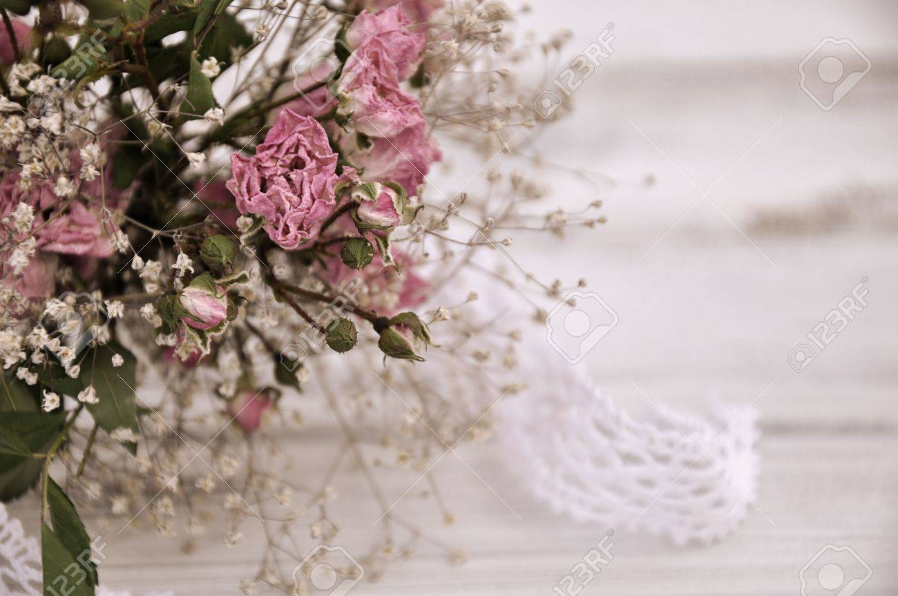Dry flowers bouquet of roses and baby breath on white background dry flowers bouquet of roses and baby breath on white background stock photo 11260519 izmirmasajfo