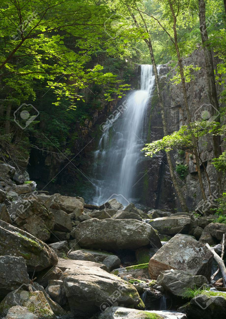 Forest Waterfall In Wild Nature Forest Panoramic High Res Picture Stock Photo Picture And Royalty Free Image Image 11048644