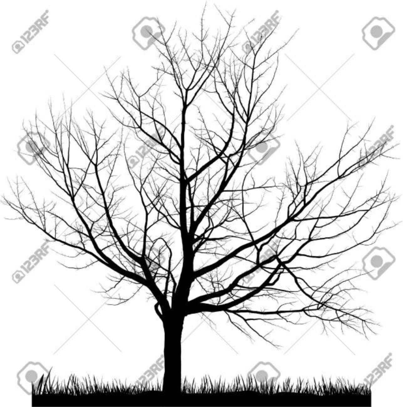 Vector illustration of cherry tree in winter Stock Vector - 6523010