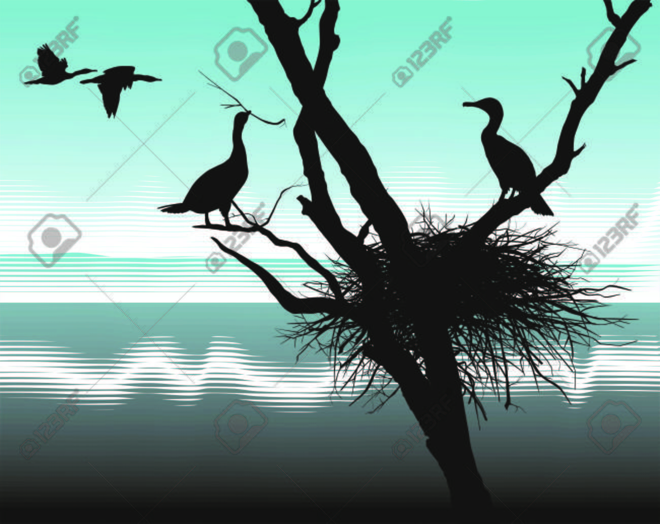 illustration cormorants nest in the dry tree Stock Vector - 8392561