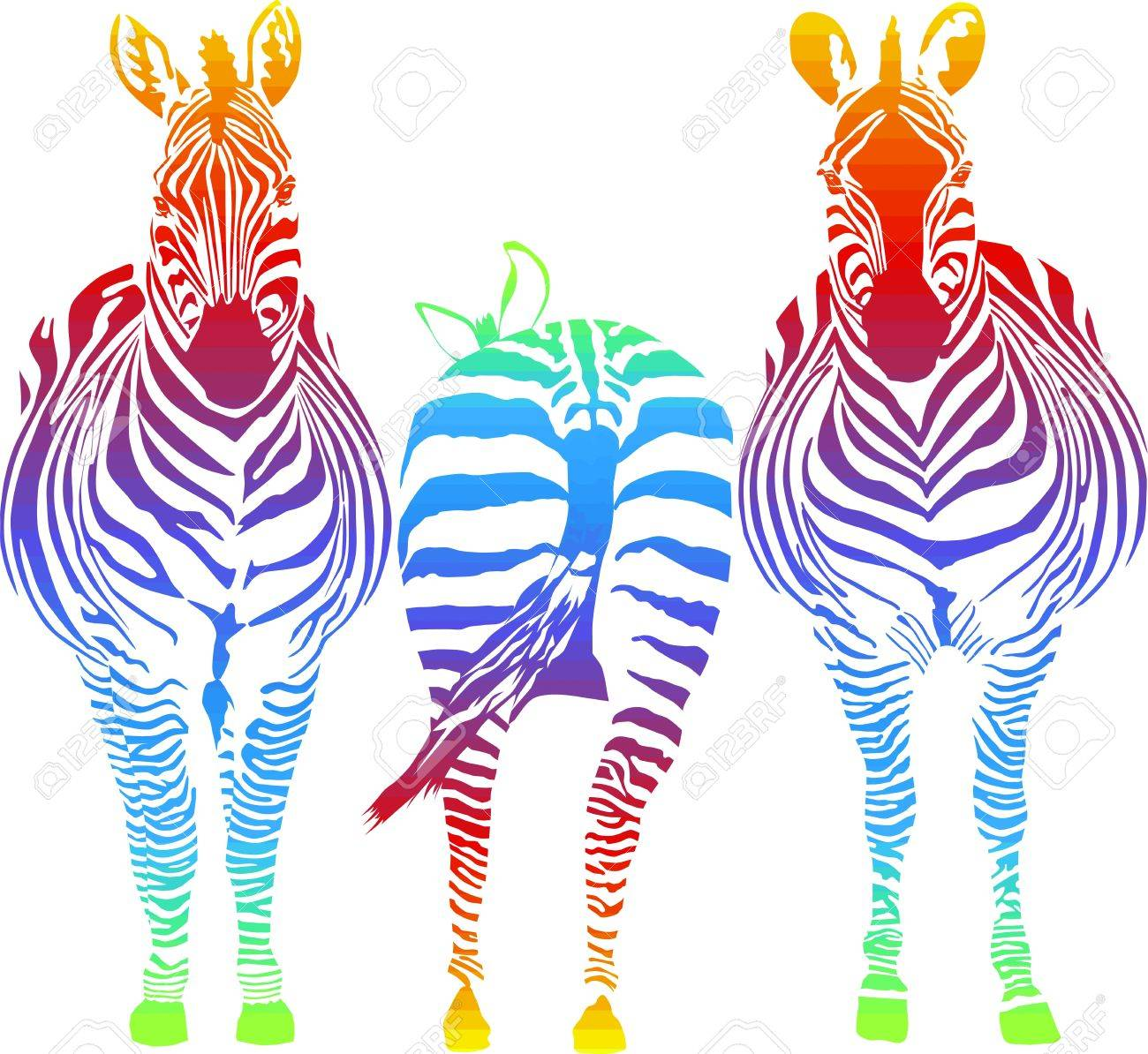 vector illustration of three rainbow in the zebra, two front, one rear Stock Vector - 11820235
