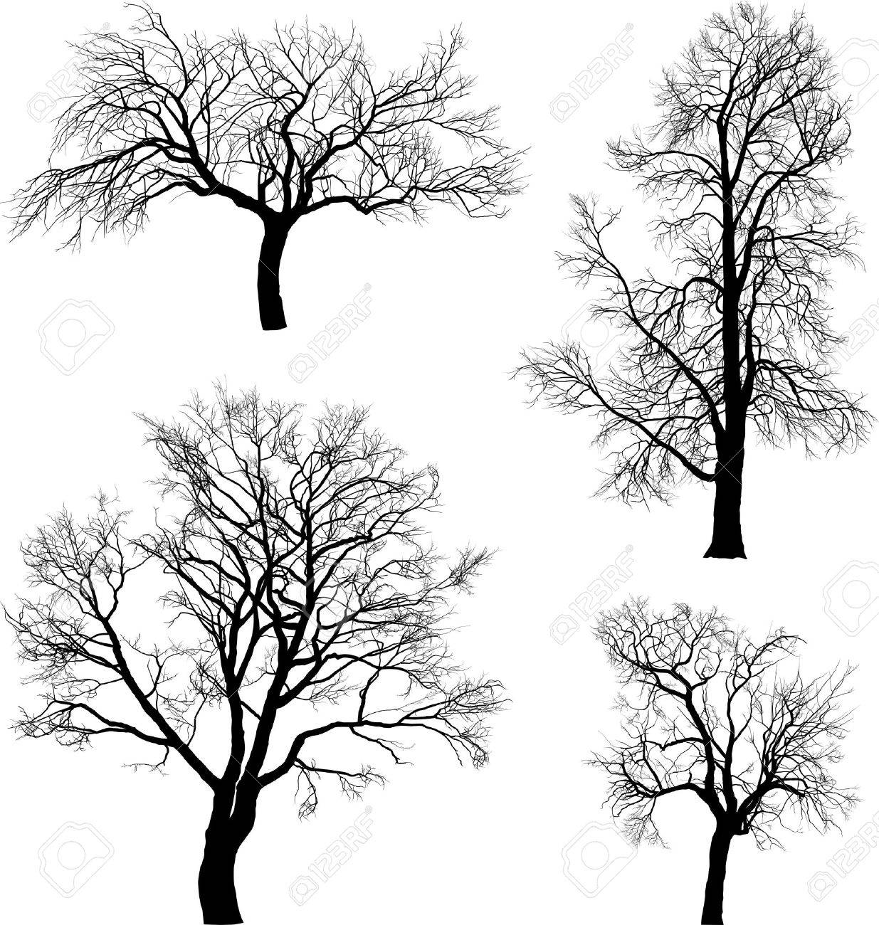 illustration of tree walnut, chestnut, raspberry  and  apple in winter Stock Vector - 13175316