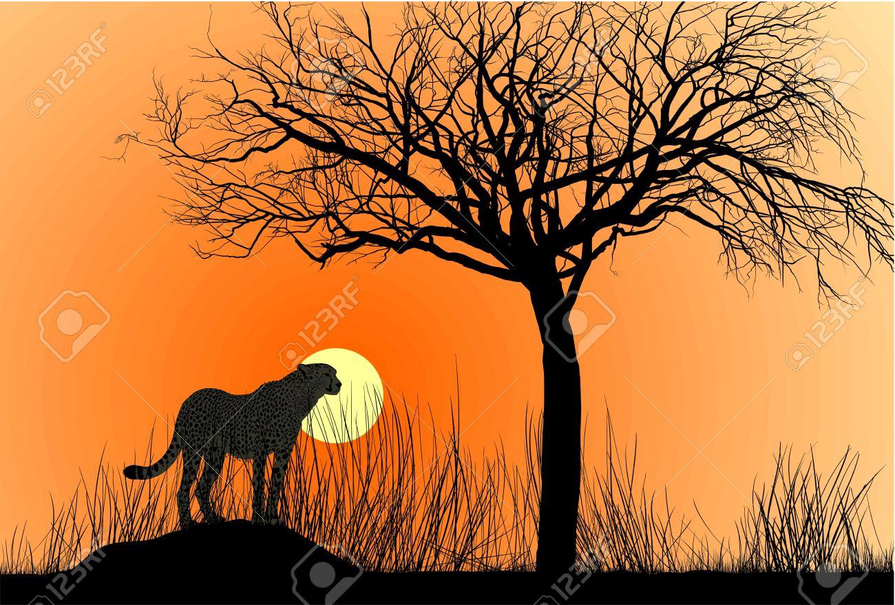 illustration cheetah on termite hill at sunset Stock Vector - 16892298