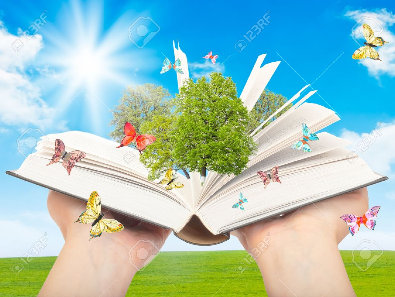 Magic book in human hands with a green tree and the rays of light