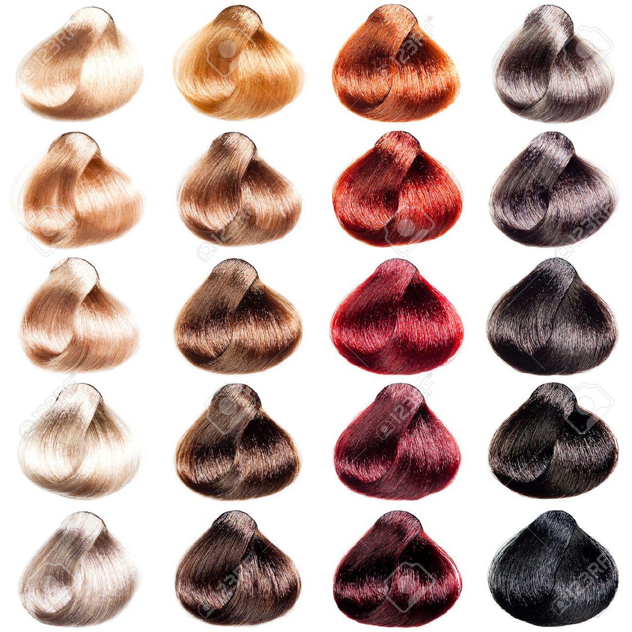 Chantillons Palette Cheveux De Couleurs Différentes Teintes