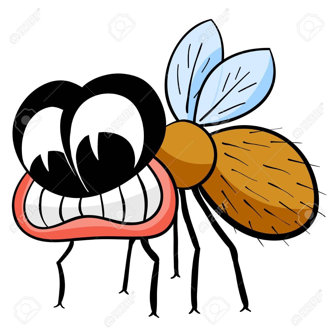 Fly Cartoon Drawing Drawing Fly Isolated on The
