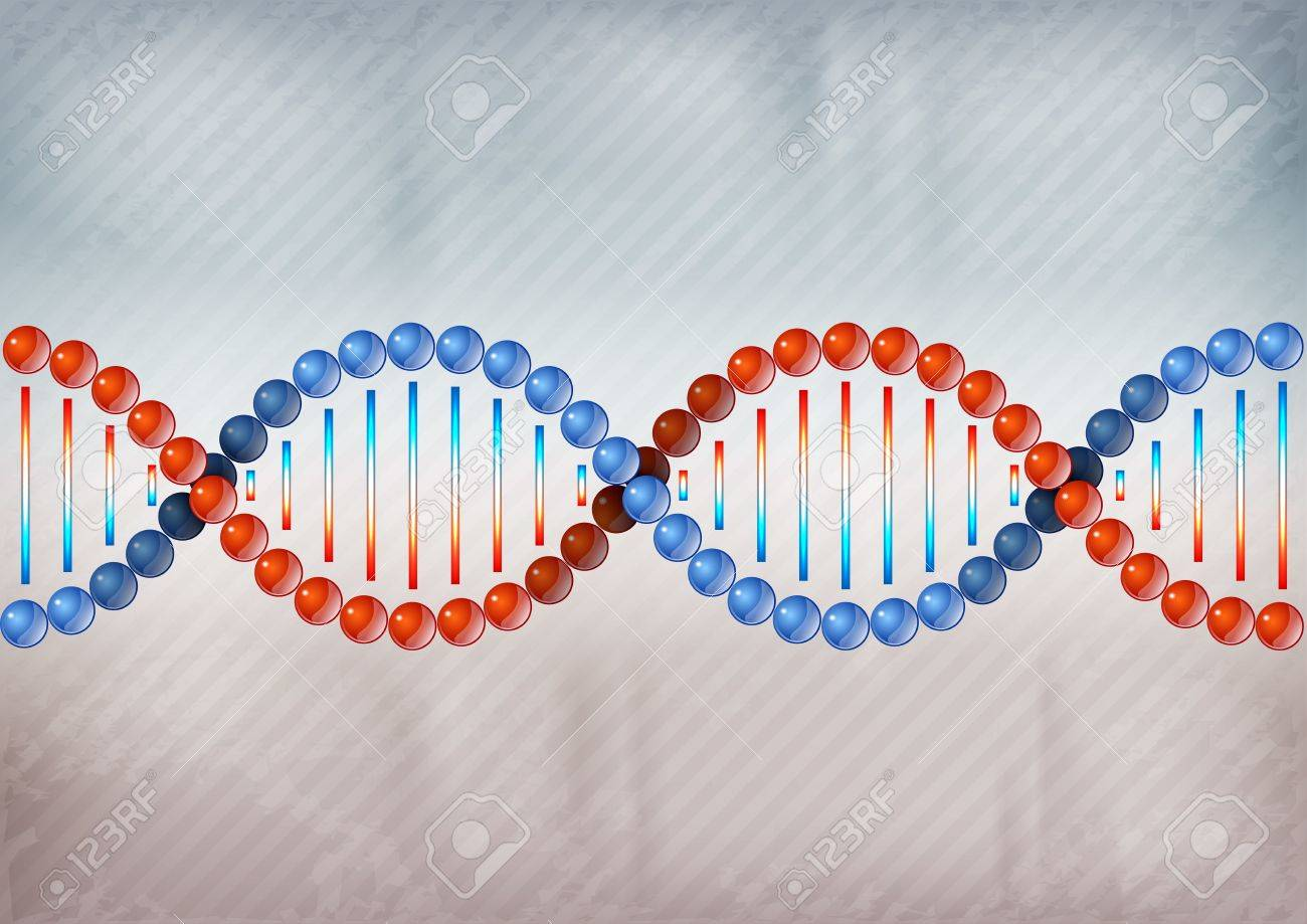 two color DNA on the grey background Stock Vector - 18382588