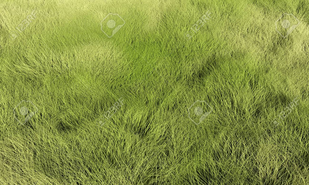 tall grass texture seamless. Grass, Lawn Or Meadow Background. Render Texture In Excellent Quality Any Part. Tall Grass Seamless