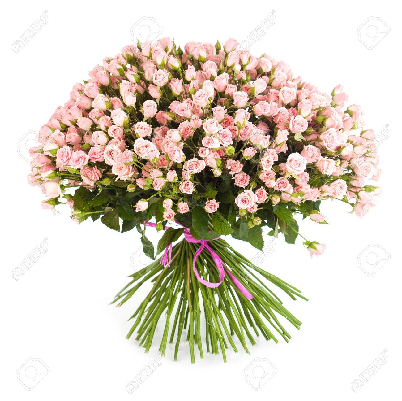 Big Flower Bouquet From Bright Pink Roses Isolated On White