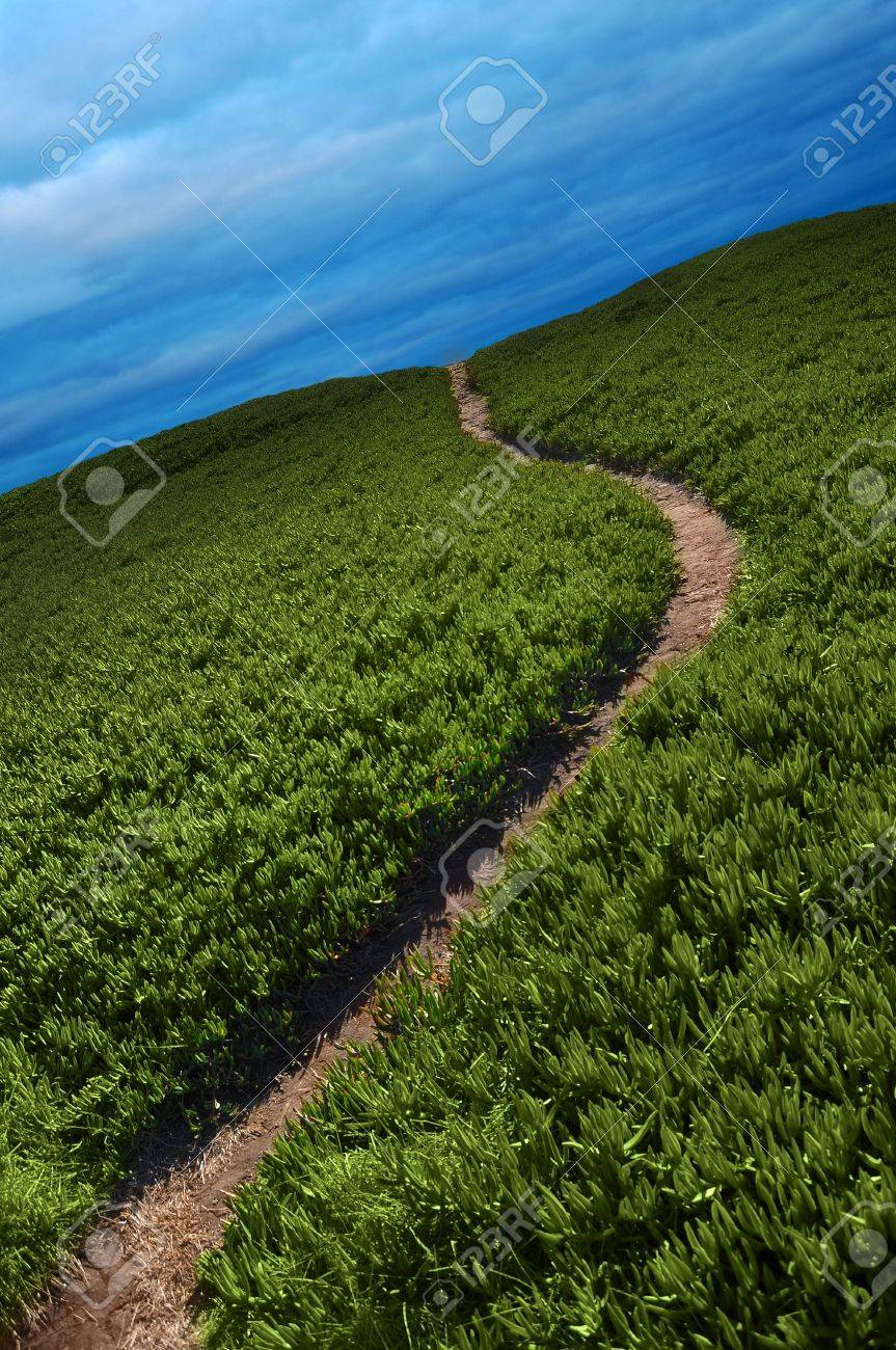 Narrow dirt pathway going through green ice plant off into the horizon with blue overcast clouds above Stock Photo - 8087865