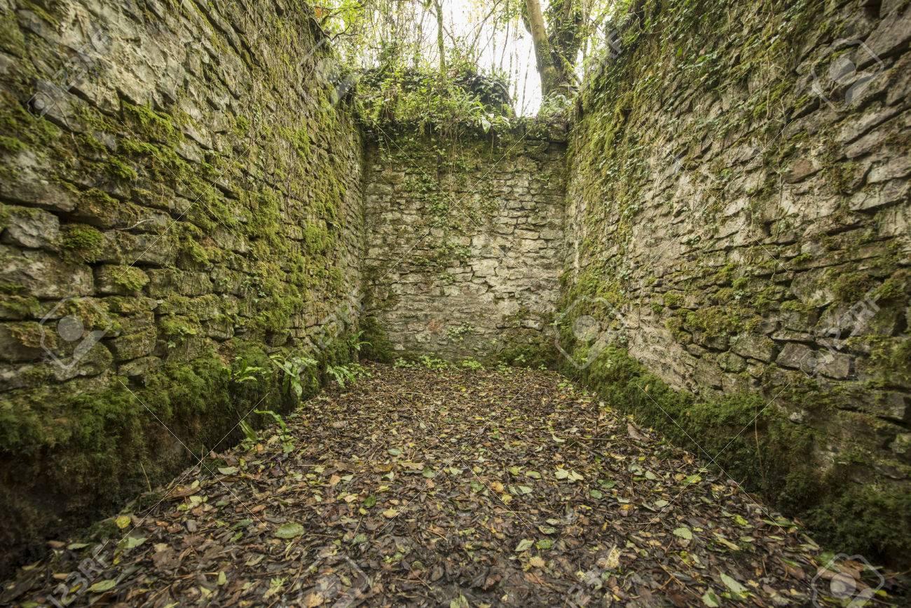 Alte Kopfstein Ruinen Schaffen Ein Zimmer Mit Wänden In Einem Wald ...