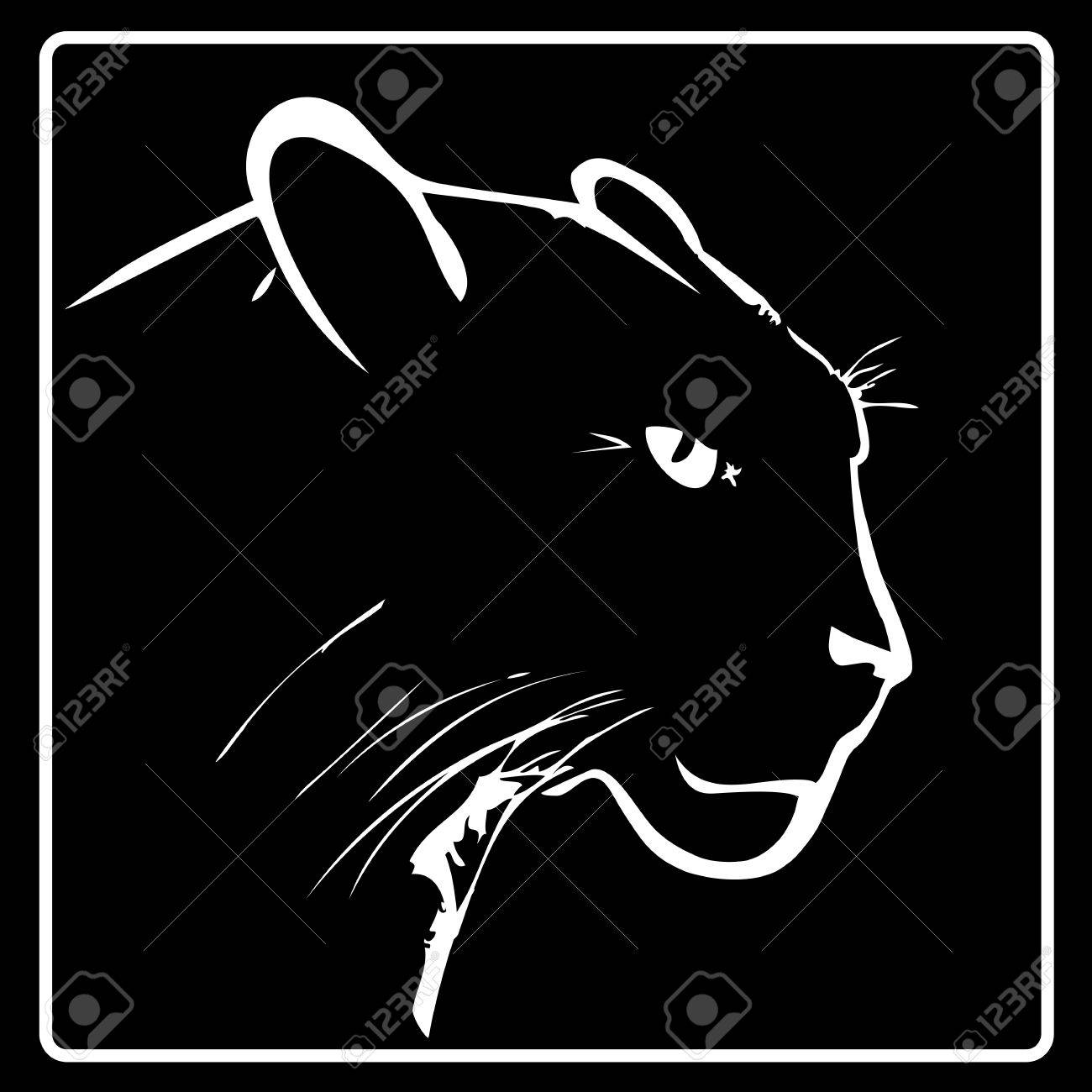 Black Panther Background Panther on a Black Background