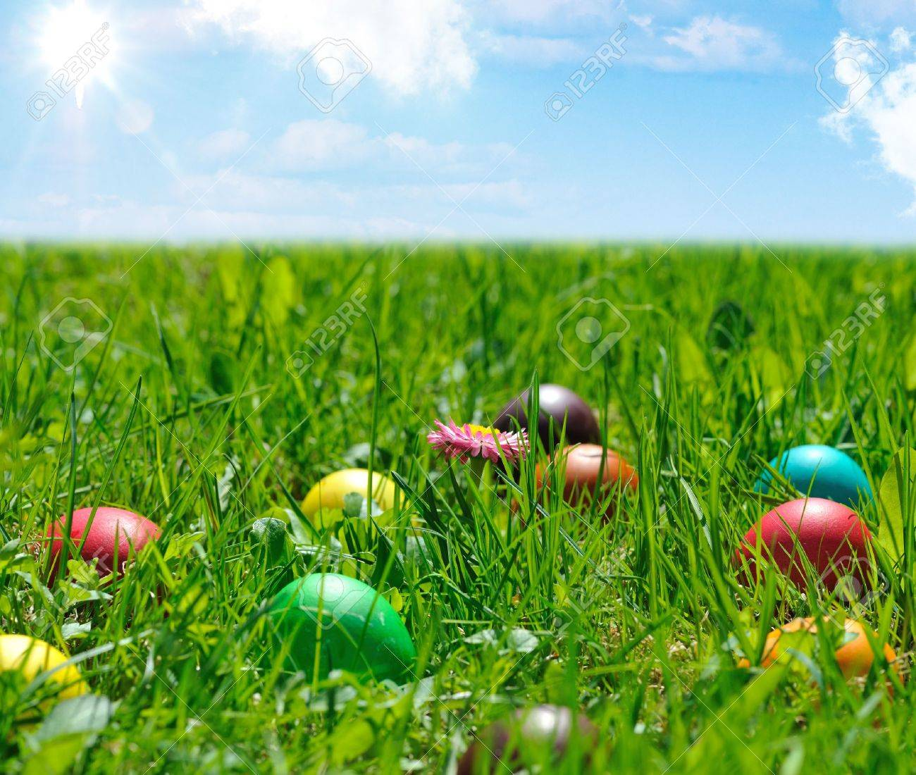 colorful easter eggs in green grass Stock Photo - 12001269