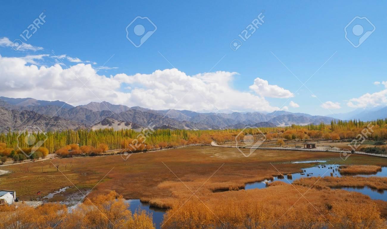 Beautiful winter season in Leh Ladakh, India