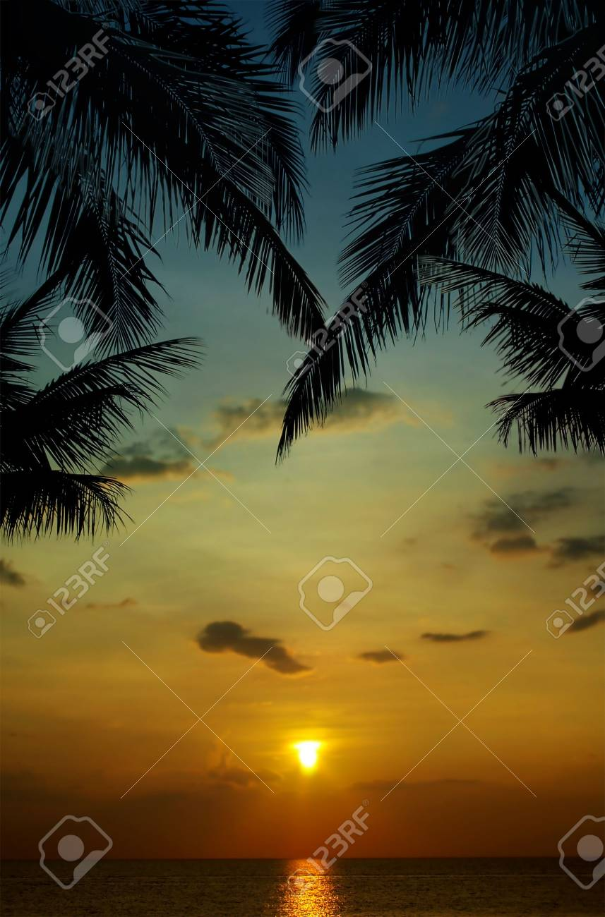 sunset in tropics Stock Photo - 3357485