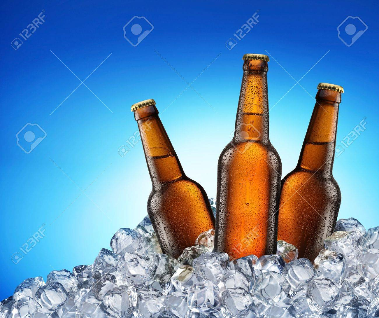 Three beer bottles getting cool in ice cubes. Isolated on a blue. File contains a path to cut - 8296269