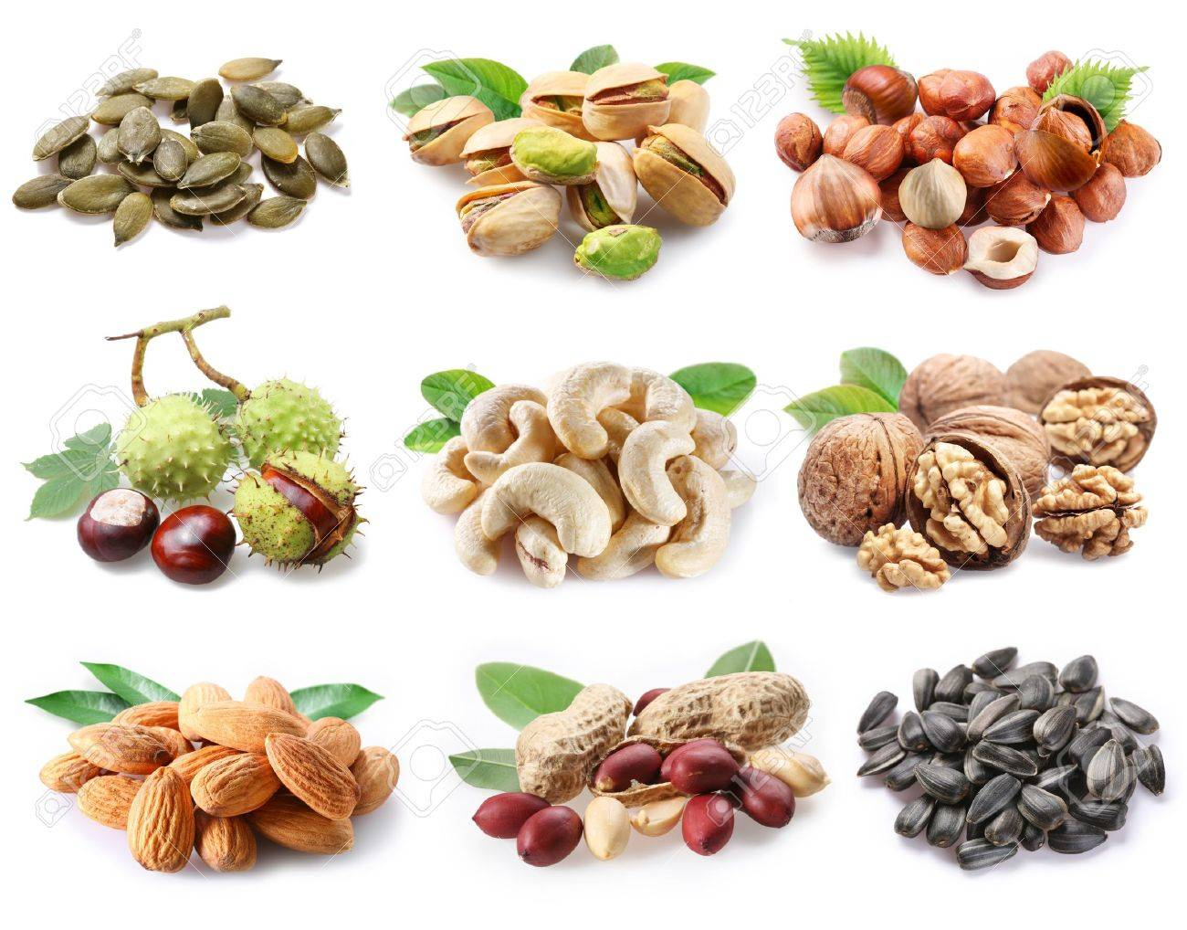 Ñollection of ripe nuts and seeds on a white background - 8402943