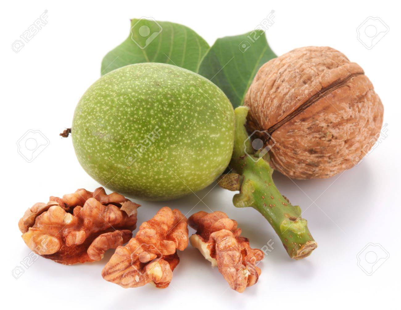 Green walnut; peeled walnut and its kernels. Isolated on a white background. - 10298938