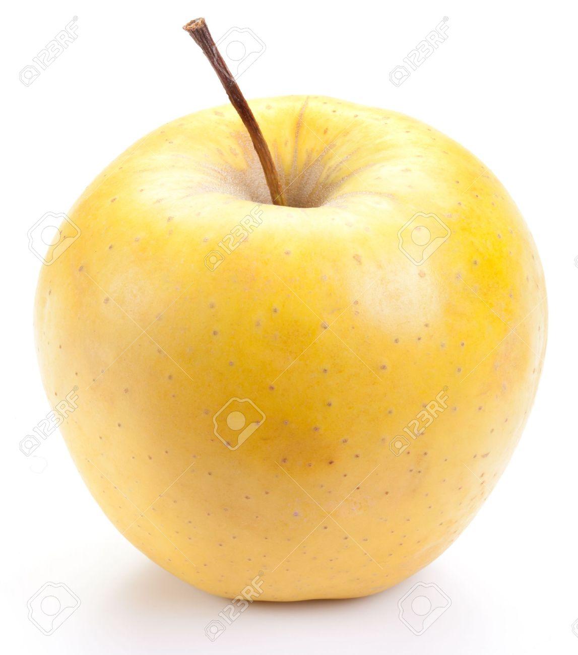 Yellow Apple Pictures Yellow Juicy Yellow Apple