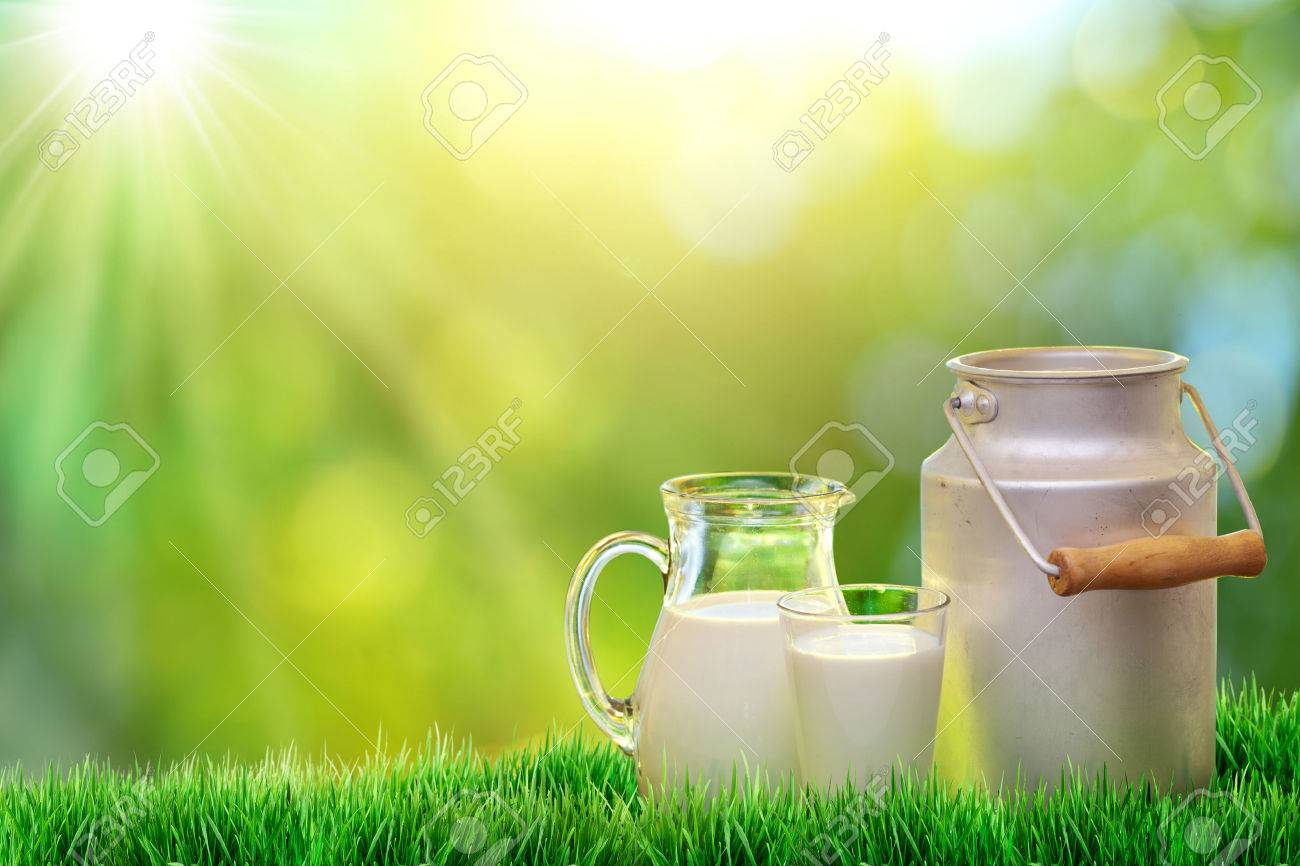 Fresh Organic Milk Nature Background Stock Photo Picture And