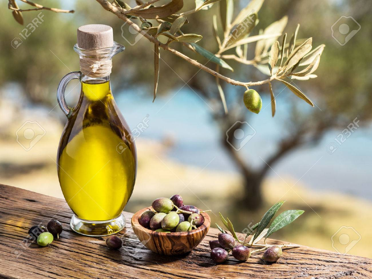 Olive oil and berries are on the wooden table under the olive tree. Standard-Bild - 49883726