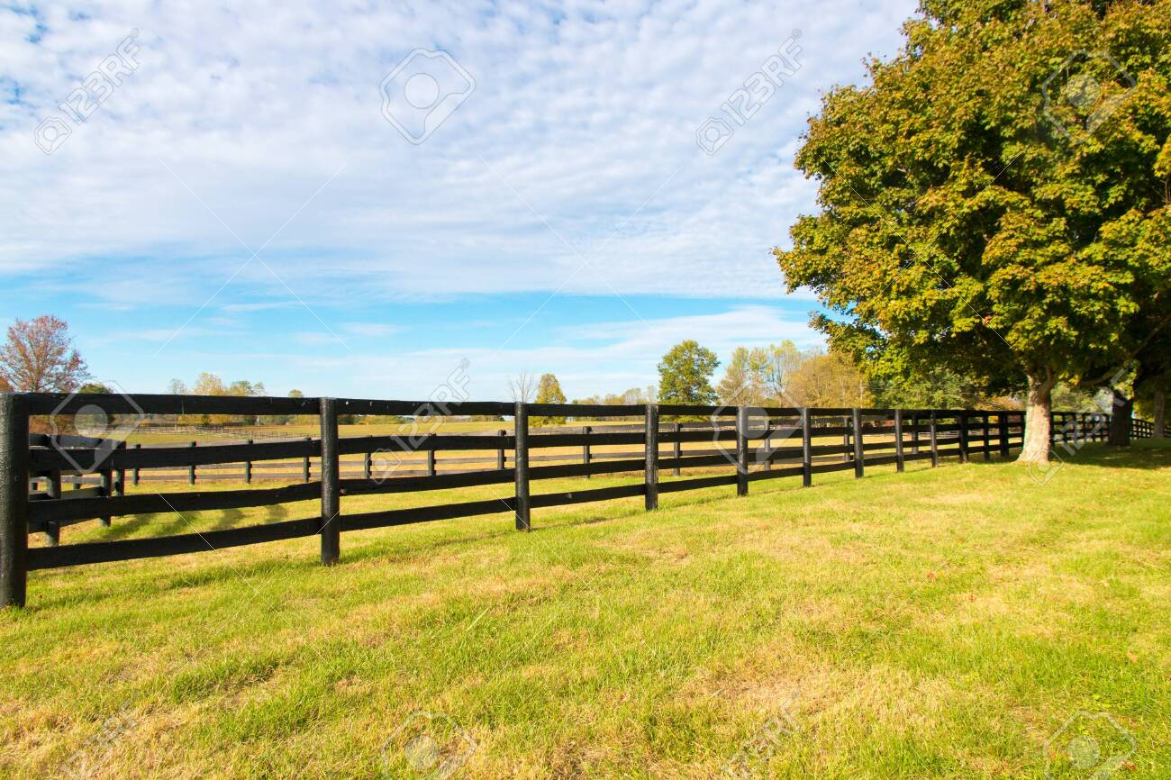 Beautiful Country Landscape With Colorful Tree And Pastures Of Stock Photo Picture And Royalty Free Image Image 141565834