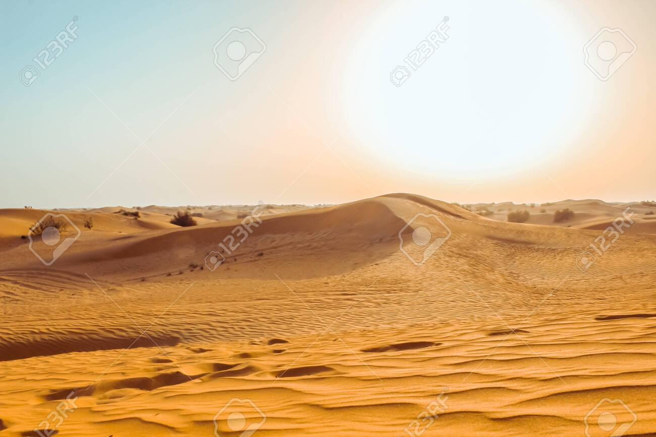 Sand dunes of the desert close up. Dubai 2019. - 123756642
