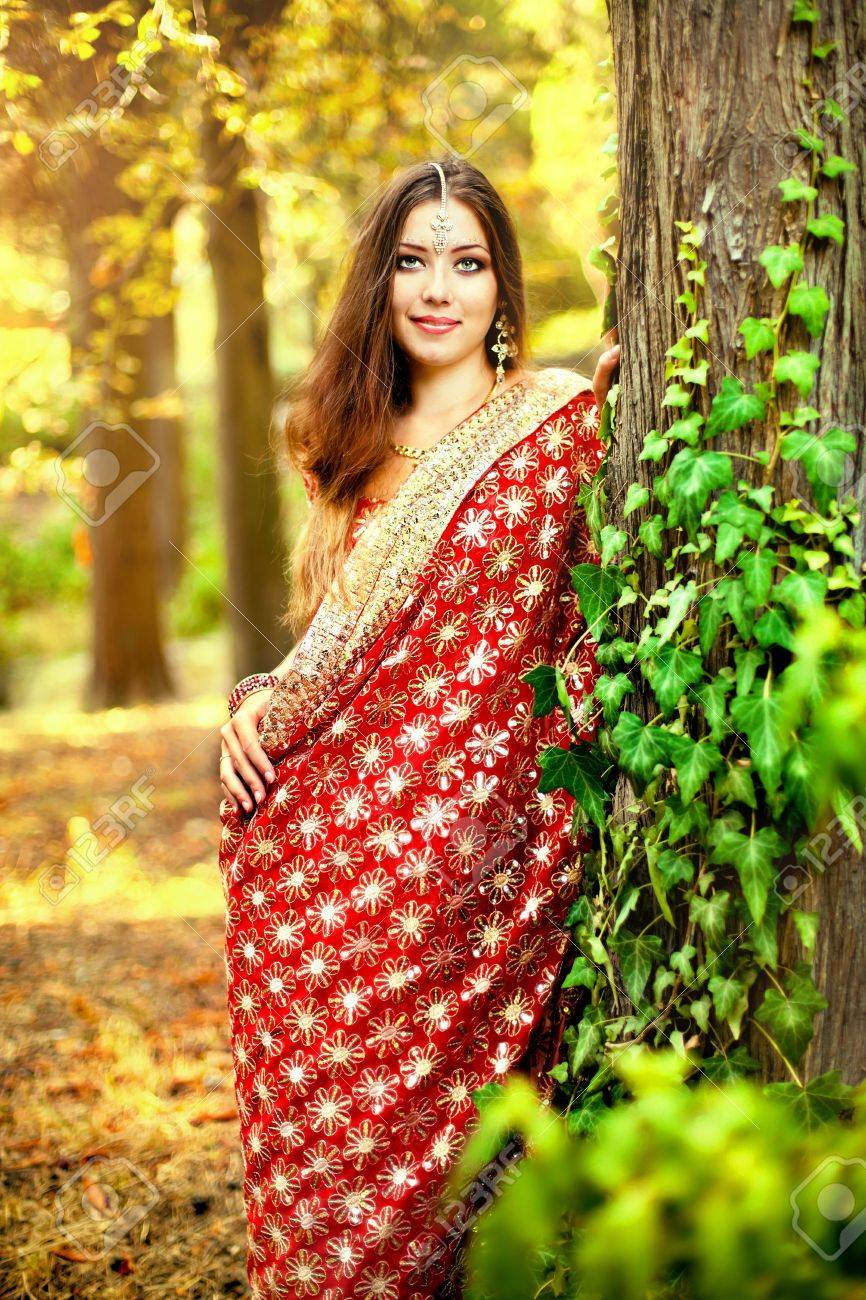 Series. young beautiful brunette in the indian national dress Stock Photo - 8776010