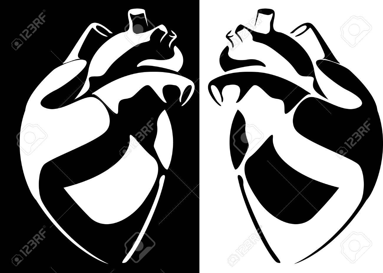 Human Heart Vector Black And White Heart on a Black And White