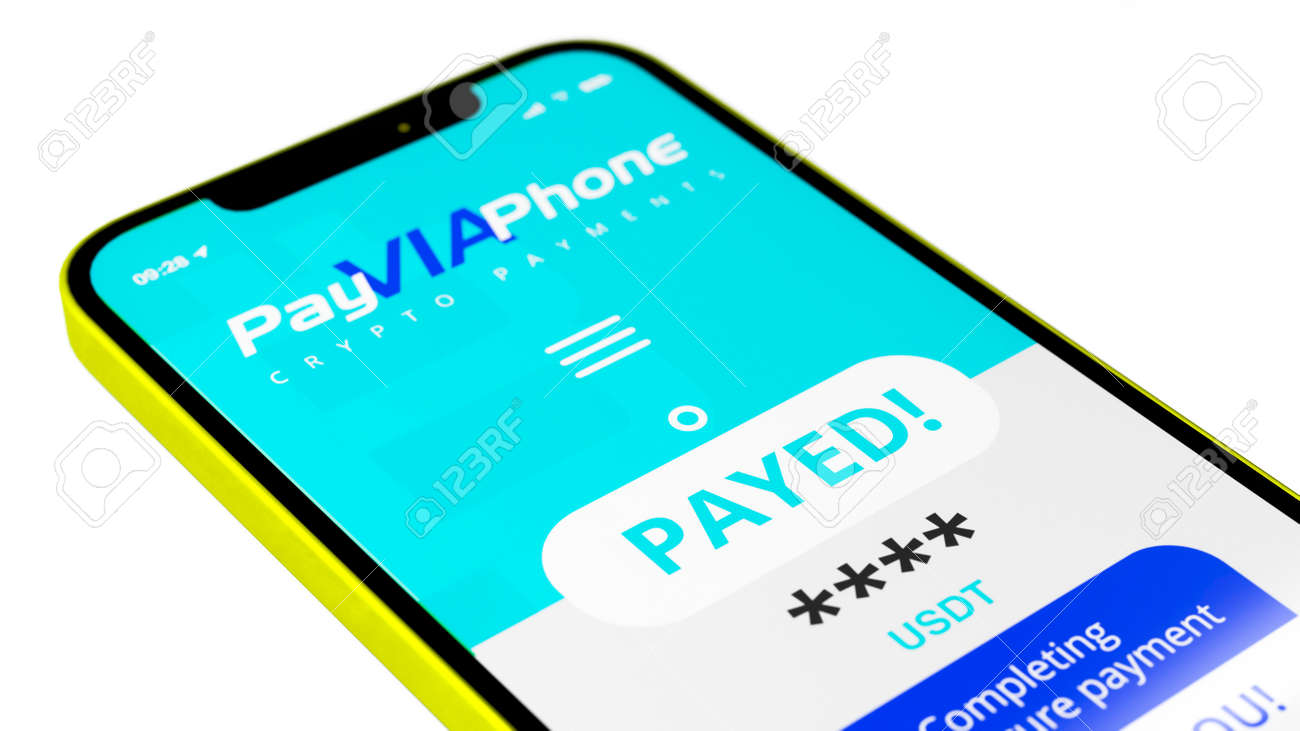 Online payment terminal and phone concept. - 169930640