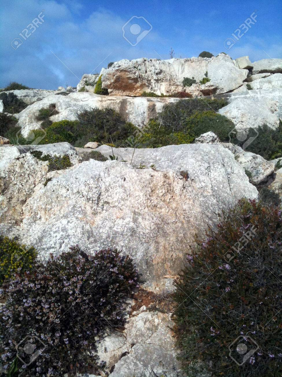 Maltese cliff - 34371068