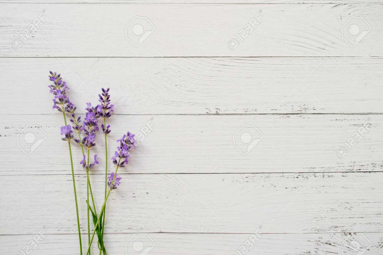 Composition of lavender on wooden background. Fresh summer flowers. Free space - 124902577